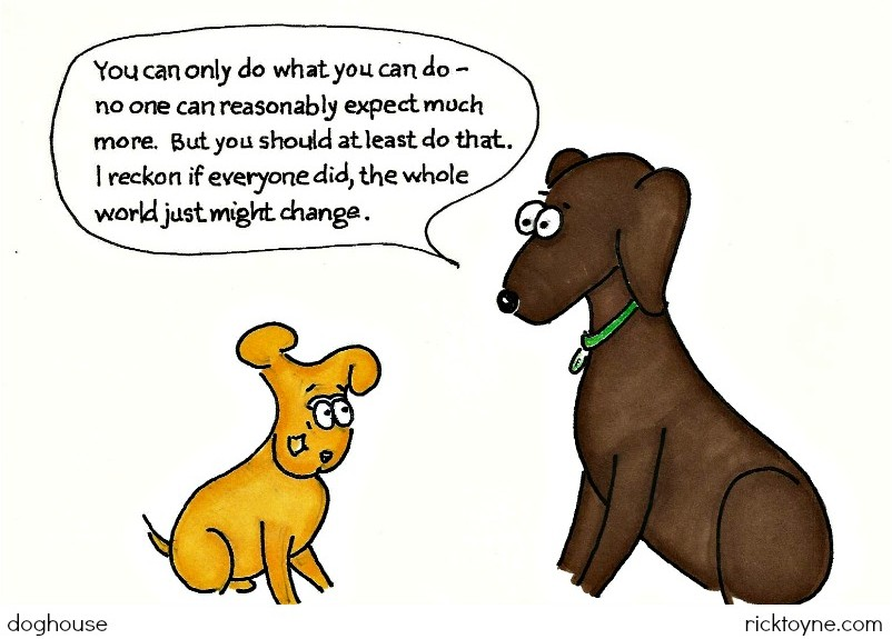 Finny says, doghouse ricktoyne.com